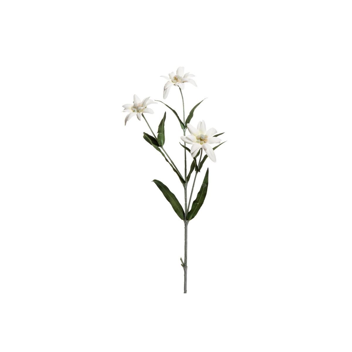 Rami Di Pesco Finti ramo stella alpina bianca — fiori artificiali | ambroso